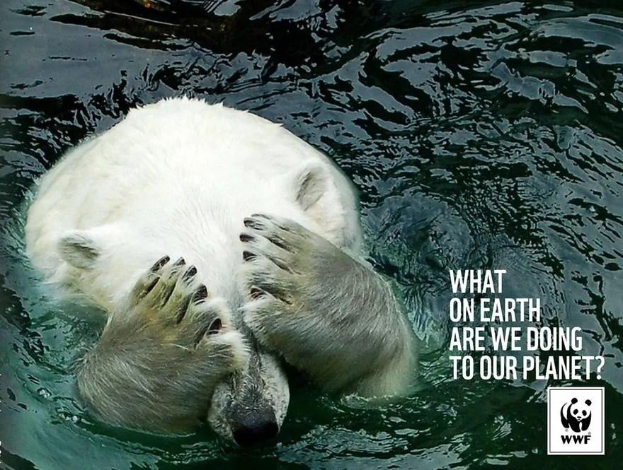 ¿Qué diablos estamos haciendo con nuestro planeta?