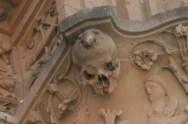 La rana de Salamanca2