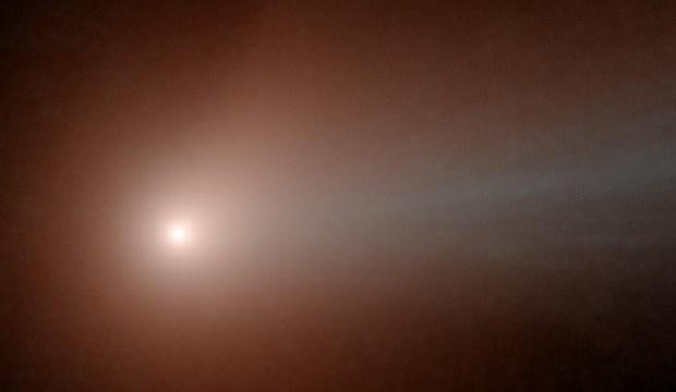 cometa-lovejoy-vazuta-de-neowise