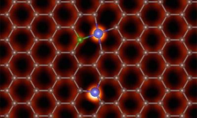 Membrana de grafen - de la ORNL