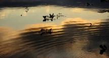 vill soriano uruguay, atardecer en el rio
