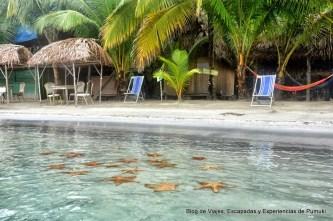 Playas para viajar Panamá