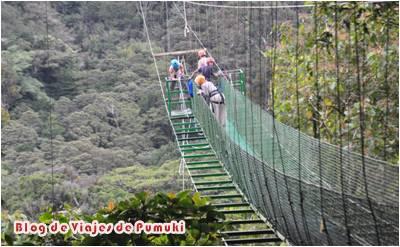 tirolinas o canopi en Santa Elena y Monteverde