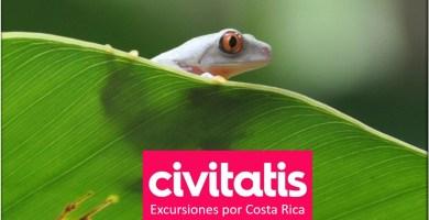 Excursiones por Costa Rica con Civitatis