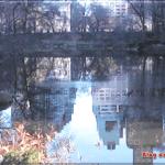 Lagos y Puentes en el Central Park de Nueva York