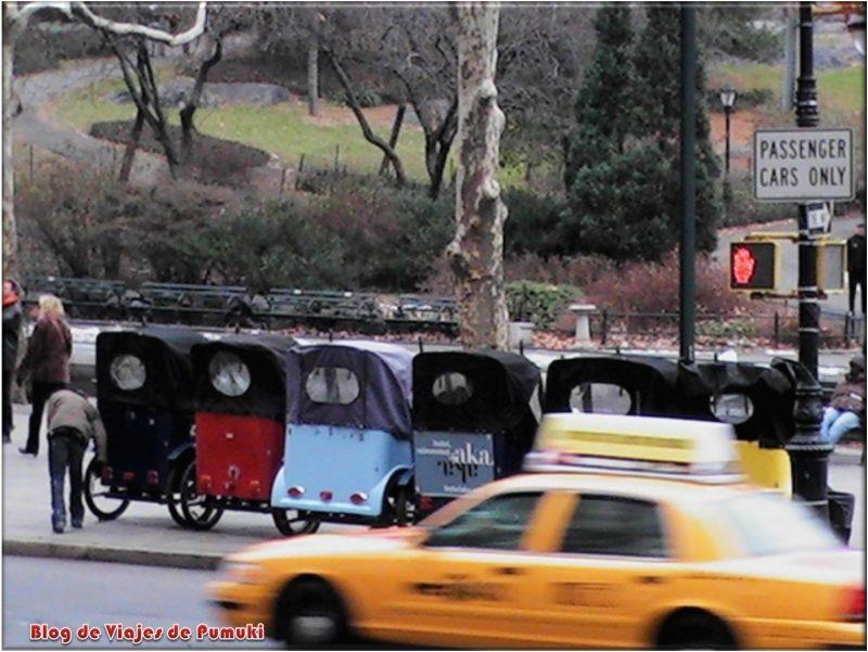 Rickshaw en el Central Park Nueva York