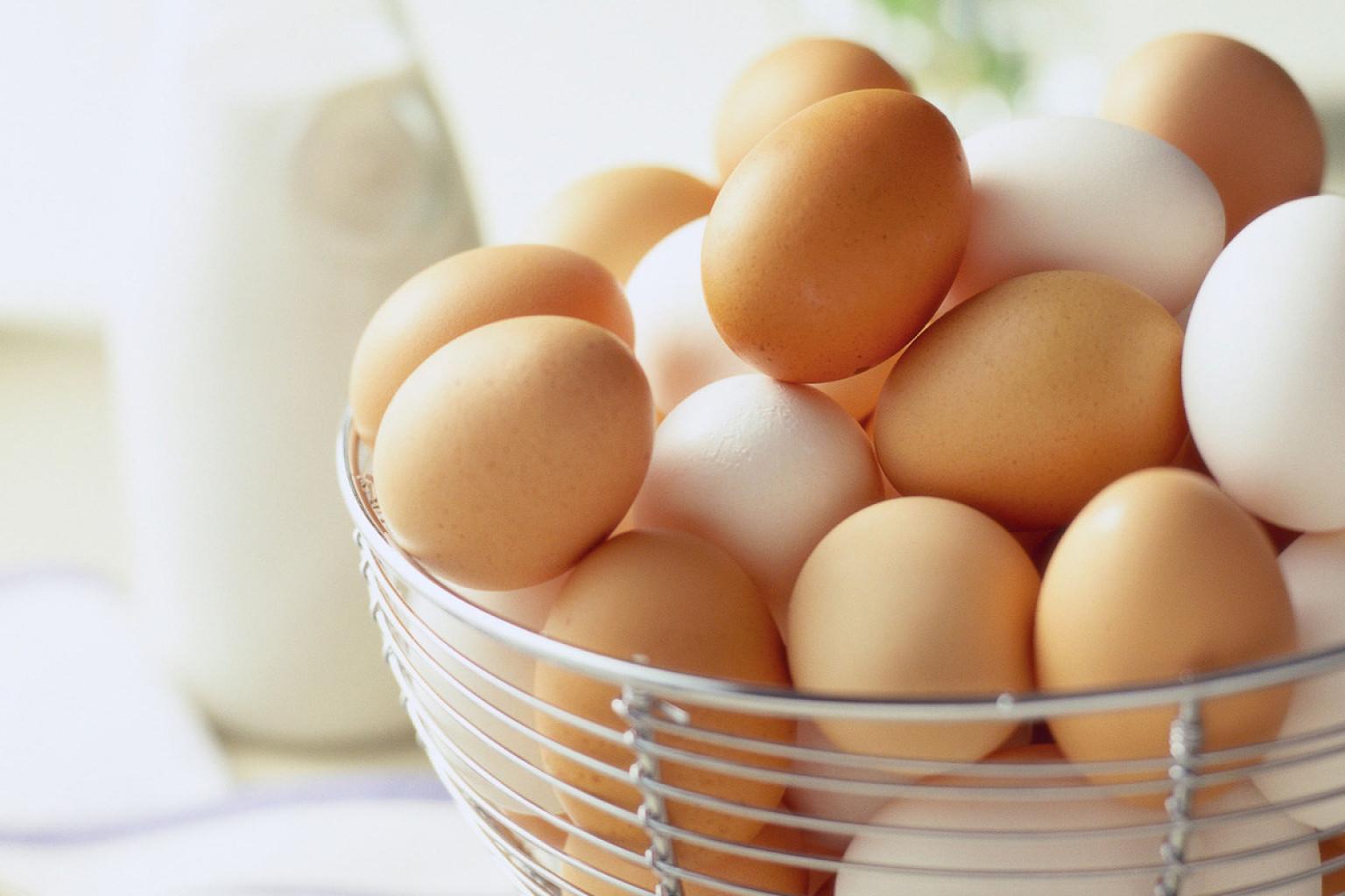 Mitos sobre ovos