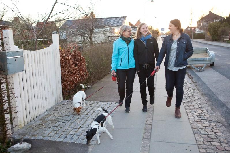 værtsfamilie lufter hund i gentofte