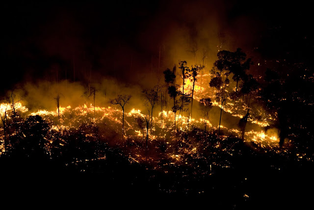 Blog do Bordalo SLIDE QUEIMADAS PARA DESMATAMENTO AMAZONIA FOTO DANIEL BELTRA GREENPEACE