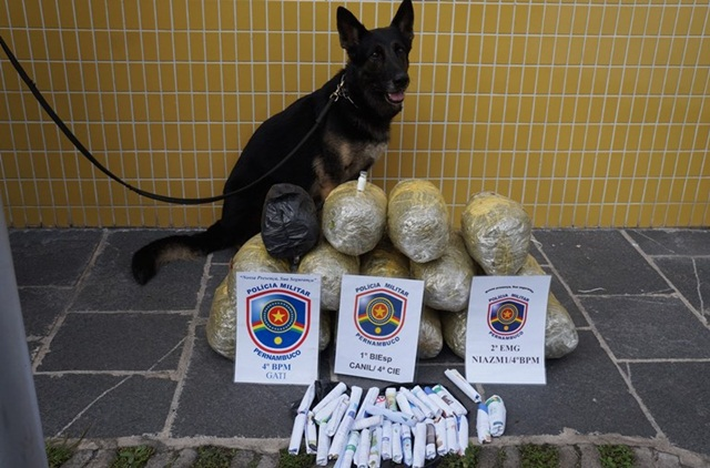 Suspeitos de tráfico de drogas são detidos em Caruaru, dentre eles um santa-cruzense