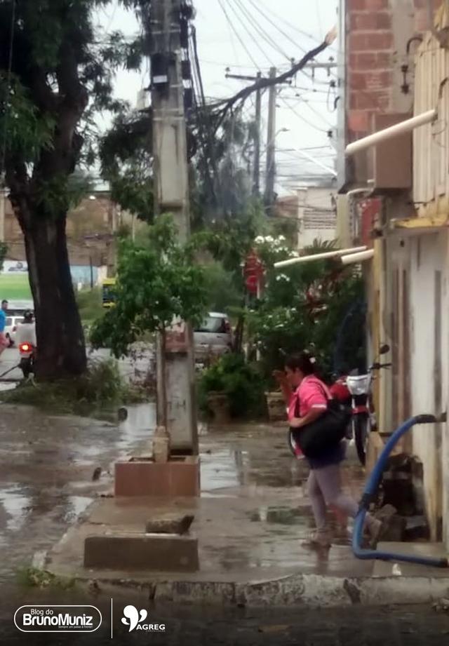 Ventos fortes provocam queda de galhos e comprometem fiação em Santa Cruz do Capibaribe