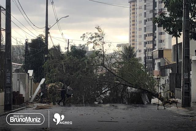 Chuva e ventos fortes provocam estragos em Caruaru, no Agreste