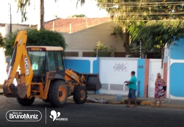 Não resistiu – Animal registrado pela nossa equipe morreu em via urbana de Santa Cruz do Capibaribe