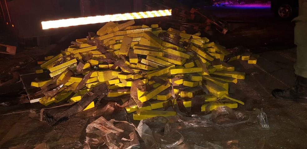 Polícia apreende oito toneladas de maconha no Agreste de Pernambuco