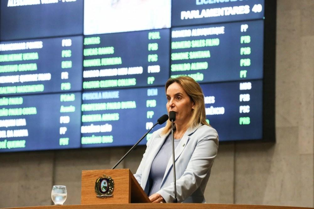 Alessandra Vieira propõe aumento da prevenção e fiscalização no litoral de PE