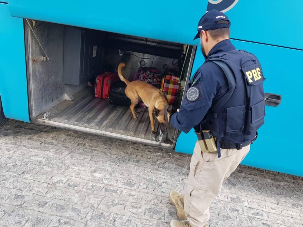 Operação Rodovida reforça fiscalização de trânsito em Pernambuco