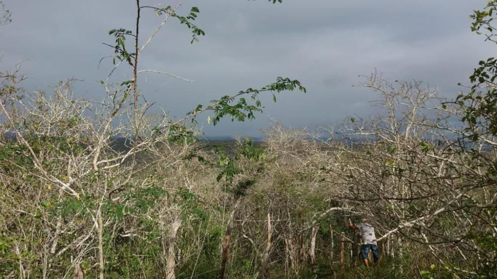 Prefeitura de Santa Cruz do Capibaribe realiza o Cadastro Ambiental Rural para agricultores