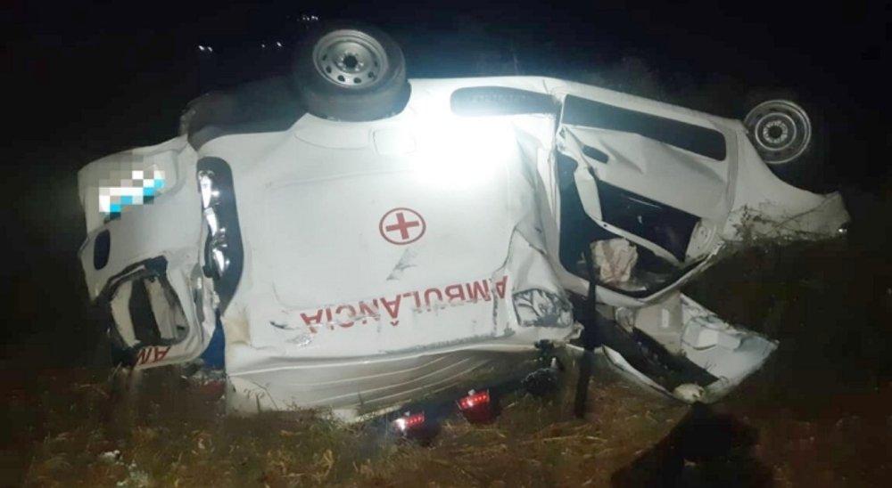 Três pessoas morrem após colisões com animais na BR-232, em Belo Jardim