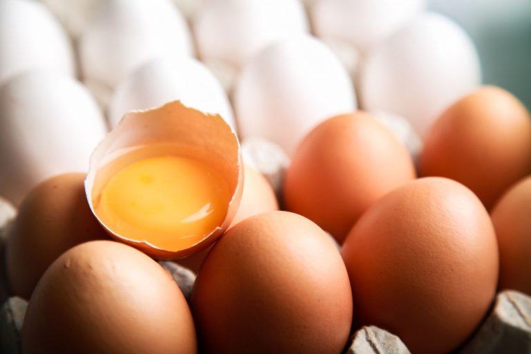 Produtores vão reduzir produção de ovos em Pernambuco