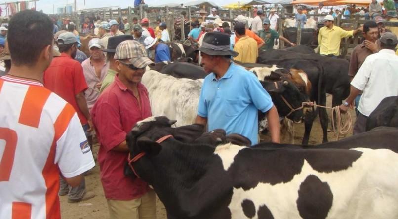 Pernambuco suspende vaquejadas e feiras agropecuárias por causa de restrições mais rígidas para conter covid-19