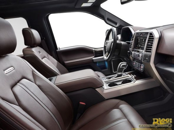 Ford F-150 2015 (4)