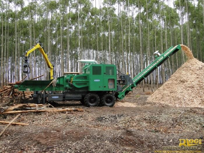 fotos-Picador-florestal-modelo-PFP-500x800