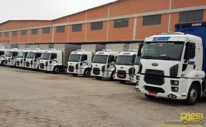 Caminhões Cargo - Daudt Logística