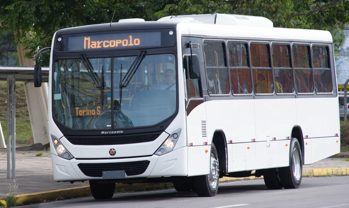 Marcopolo apresenta novo Torino S  Blog do Caminhoneiro