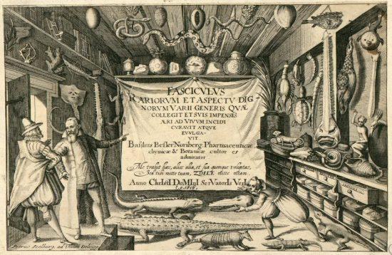 Gabinetes de Curiosidades: Coleções estranhas e MUITO Curiosas! - Blog do  Colecionador Burohaus - Estantes, coleções e muito mais!
