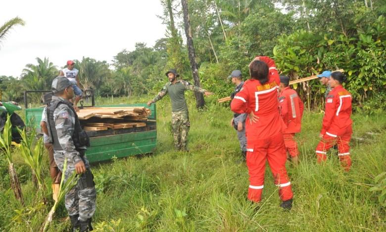 Operação combate extração ilegal de madeira em Porto Rico-MA