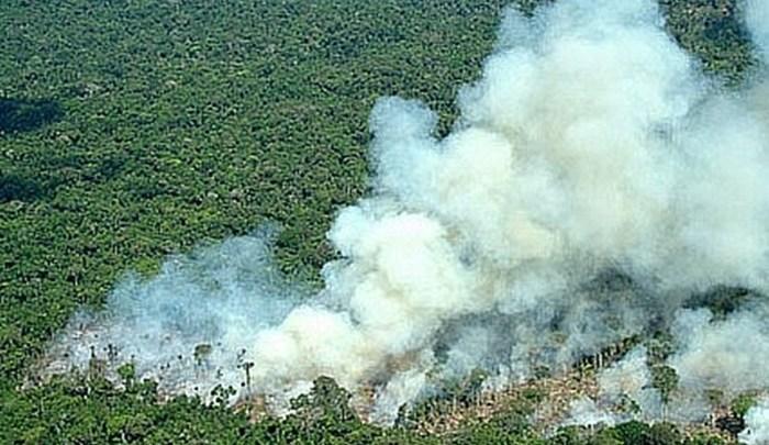 Pesquisadores comprovam que fumaça das queimadas da Amazônia pode causar câncer