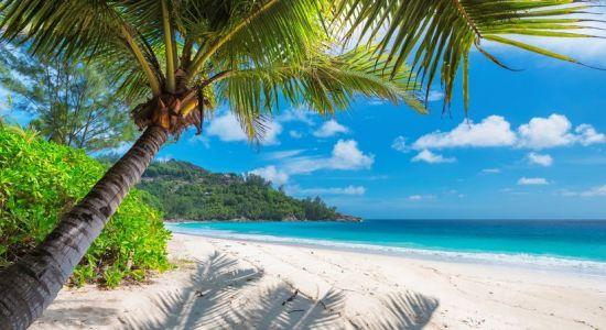 Países onde os brasileiros não são barrados: Jamaica