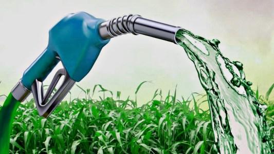 Carros com biocombustível