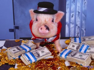 porco dinheiro