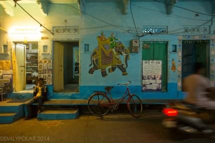 Udaipur_141126-807