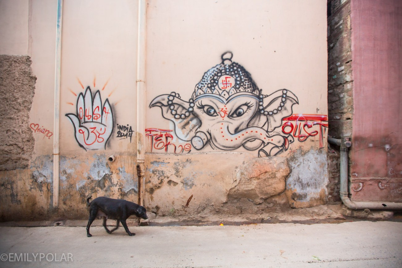 Old black dog walking the streets in Jodhpur past a graffiti Ganesha.