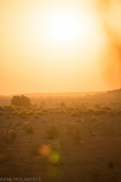 Jaisalmer_Camel_Safari_141203-90