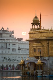 Golden_Temple_141024-372