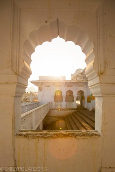 Pushkar_141124-210