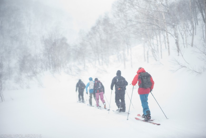 Skiers and snowboarders skinning out into the Nito backcountry to ride the fresh powder of Niseko, Japan.