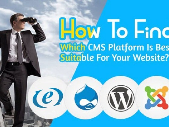 What is CMS? Which CMS is Suitable For Your Website