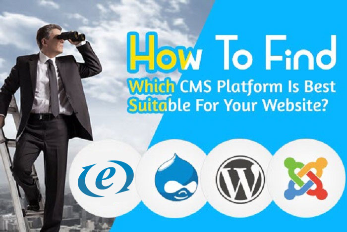 Which-CMS-is-Suitable-For-Your-website