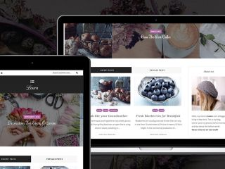 9 Tips to Select The Perfect WordPress Theme For Your Blog
