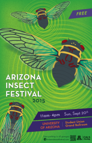 Insectfestival