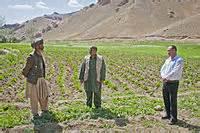 Afghan 47