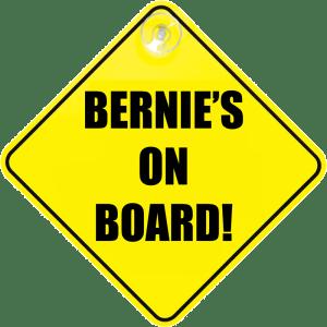 bernie_on_board