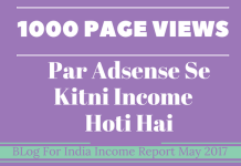 1000 VIEWS Se Kitni Income Hoti Hai