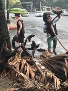 Monsun Bokashi Myanmar