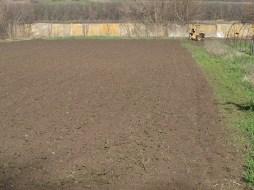 поле перед посадкой картошки