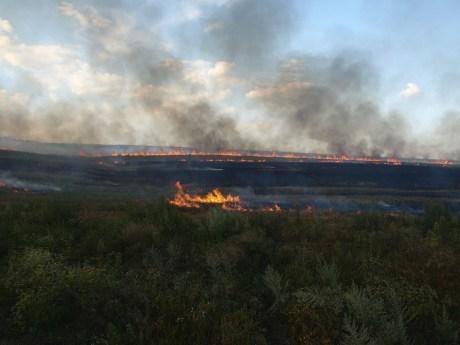 тушение пожаров гасіння степових пожеж